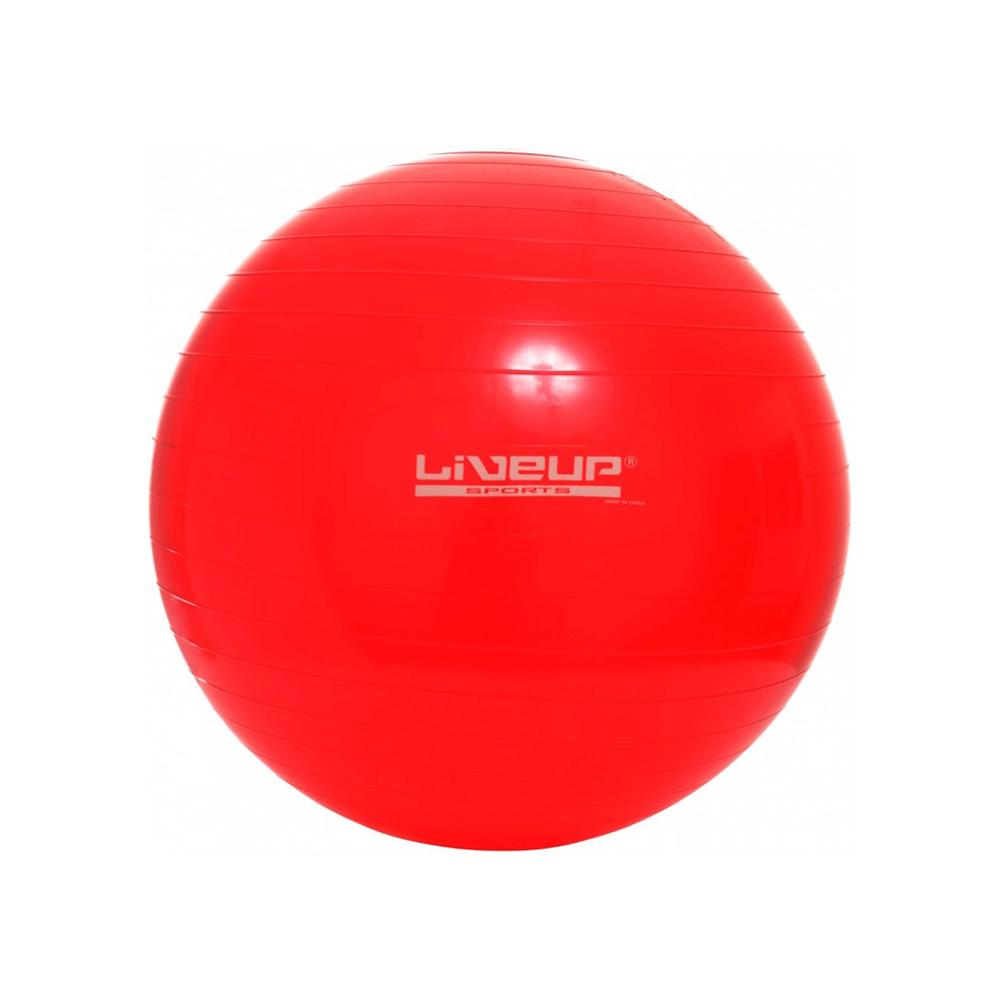 56ba85bfea Bola suiça para pilates 45cm - liveup - fisiofernandes-mobile